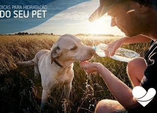 PET hidratado
