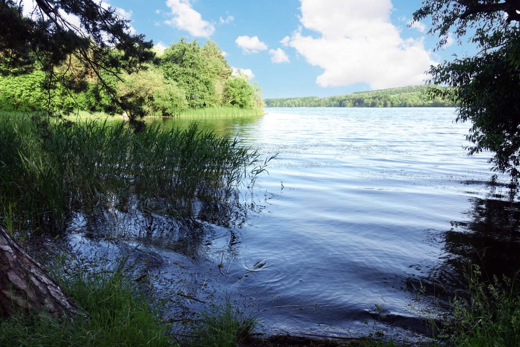 Preservar o ciclo vital da água é preservar a natureza. As principais ações para preservar a água são: Proteger os mananciais. Reflorestar as margens dos rios. Evitar desperdício. Utilizar de forma consciente. Tratar os esgotos